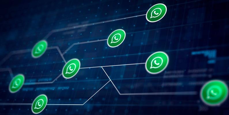 Qué es WhatsApp Business