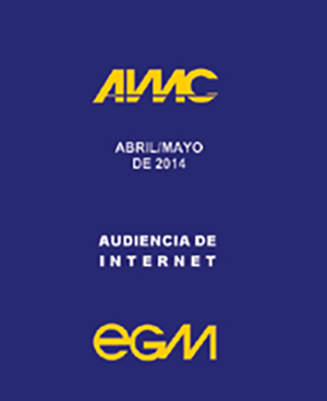 Audiencia de internet